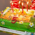 Организация дня рождения мальчика 5 лет дома